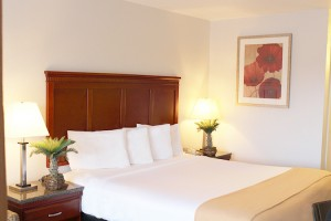 King Standard room is perfect for couples